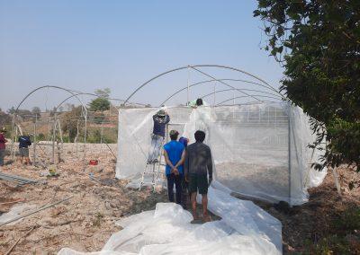 Building greenhouses